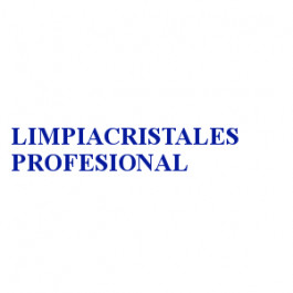 LIMPIACRISTALES PROFESIONAL