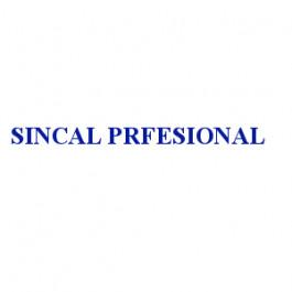 SINCAL PRFESIONAL